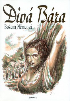 kniha-diva-bara